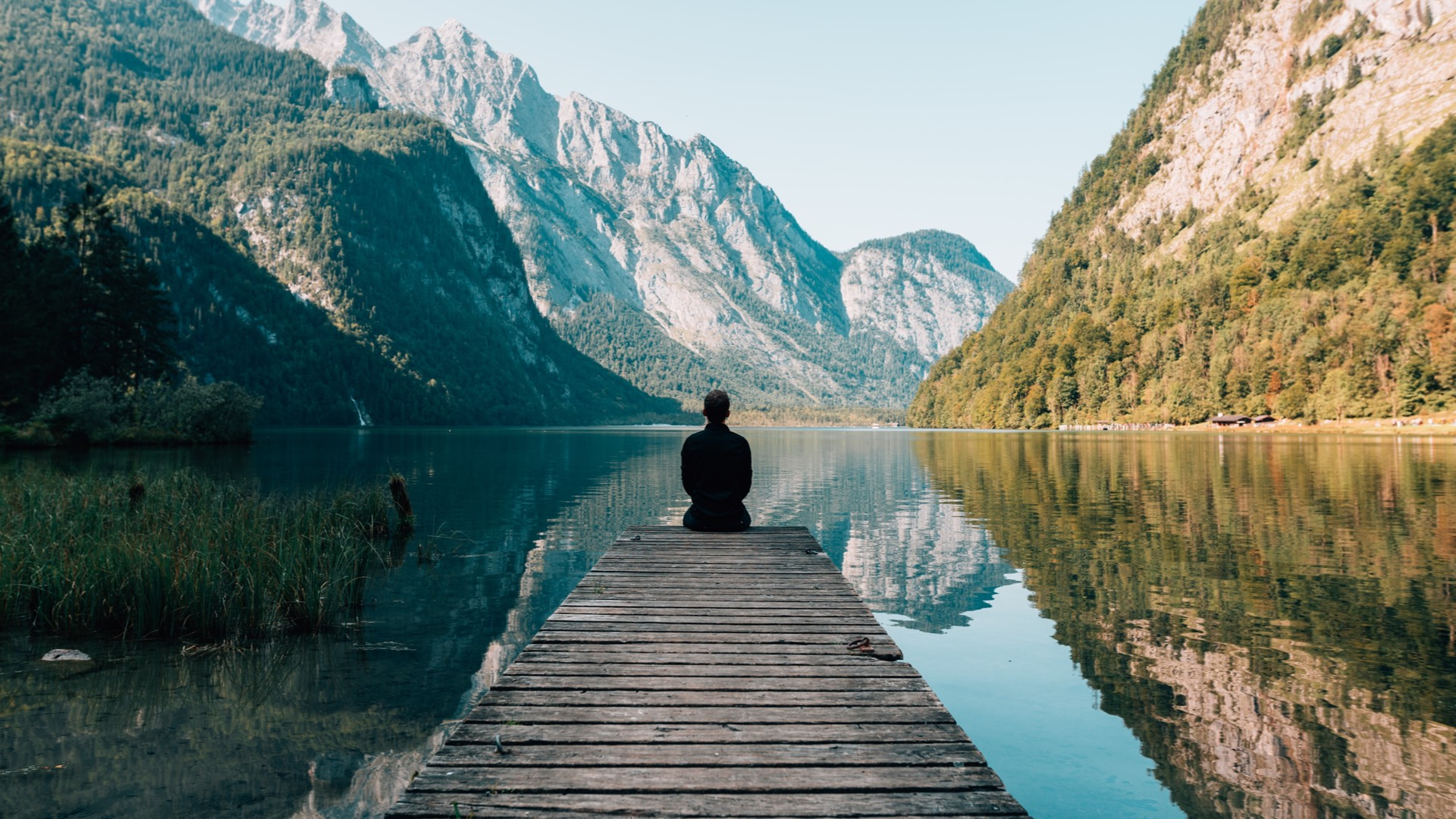 Meditação: antes de começar, contemple!